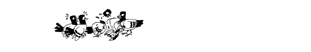 pigeons-miettes_06
