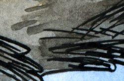 Le Furet du Bois-Funky #1